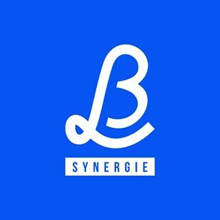 lb_synergie