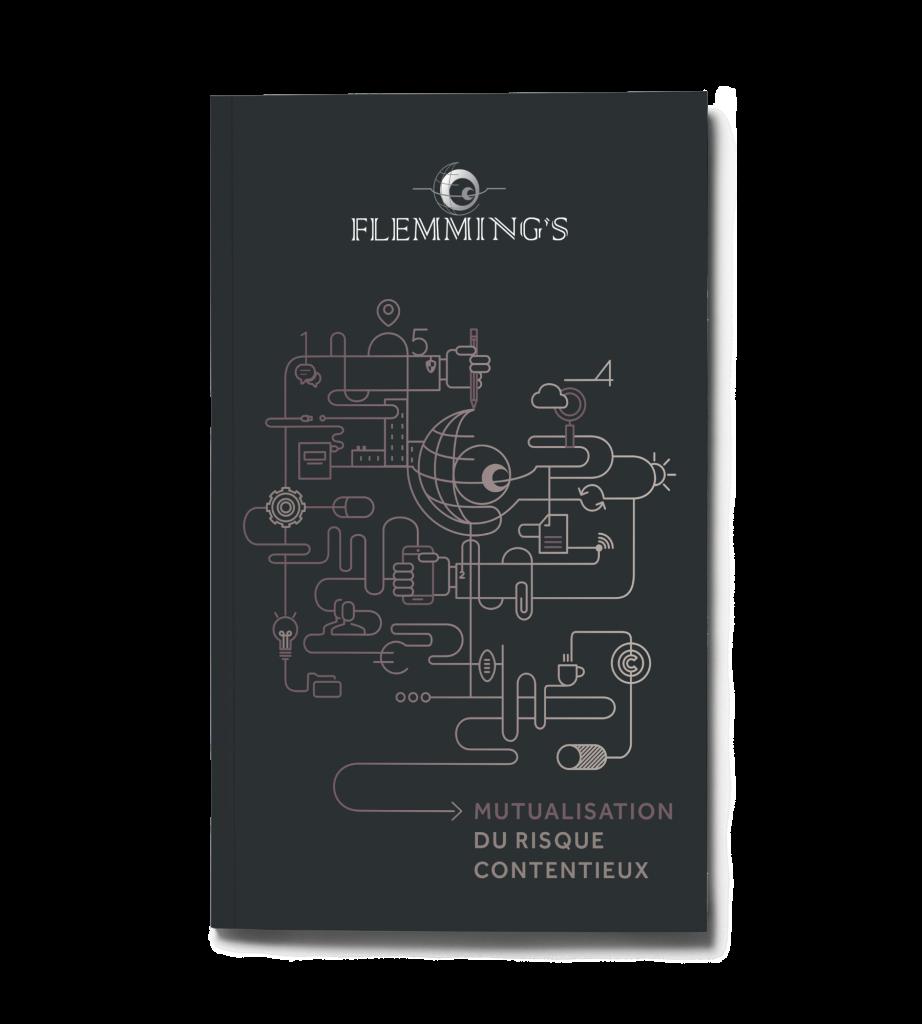 brochure-couvertures-flemmings-agence-conseil-en-communication-Letb-synergie